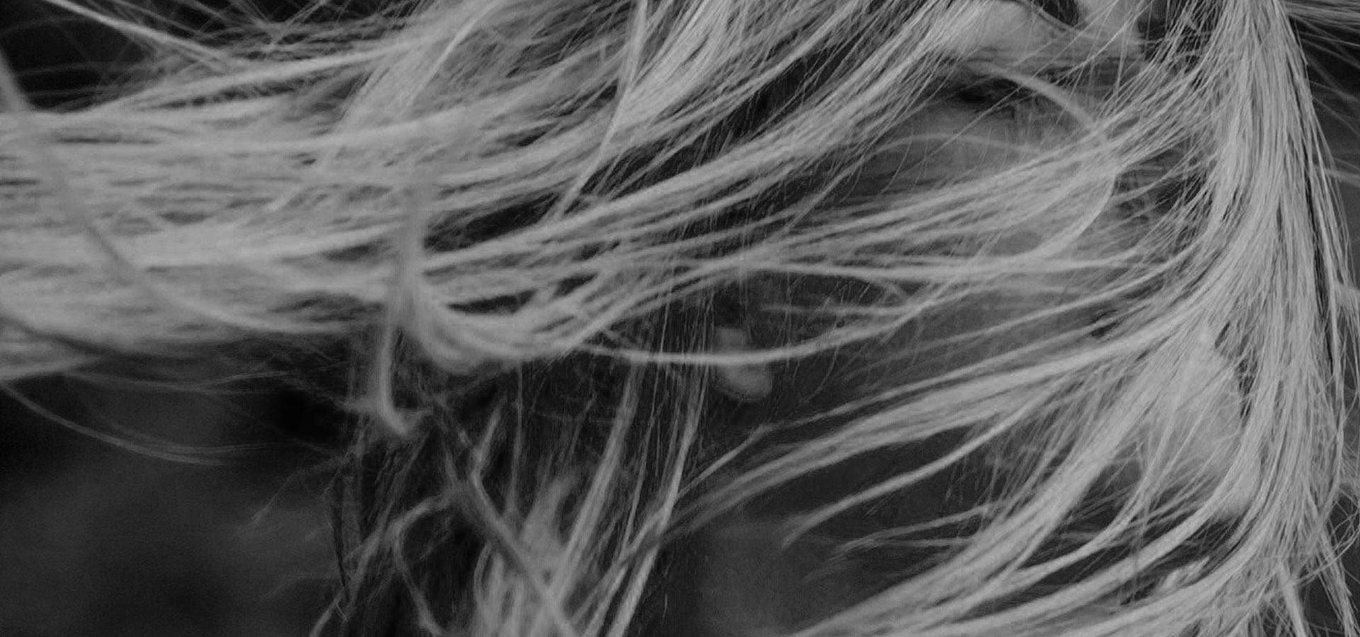 FR-hair-photo